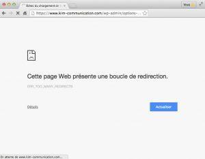 Erreur WordPress & SSL : too many redirect