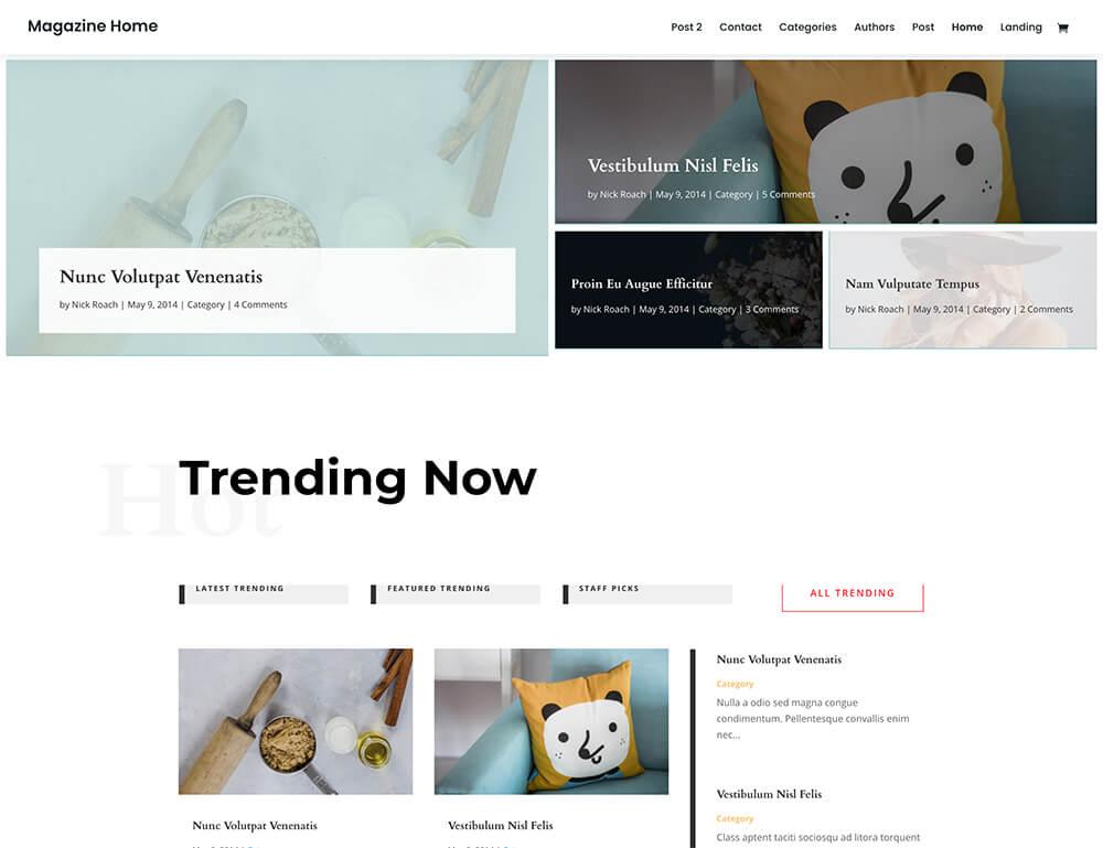 Divi : meilleur thème WordPress pour sites de news et magazines en ligne